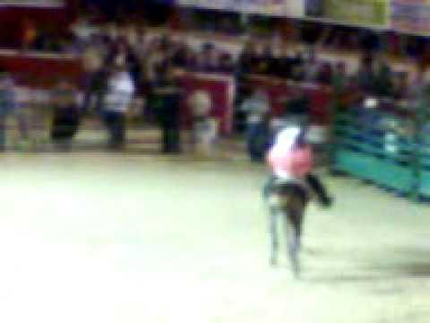 Joan a caballo 0 replace