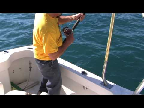 Mazatlan Mexico Bottom fishing