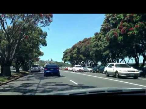 Living in Auckland - N.Z