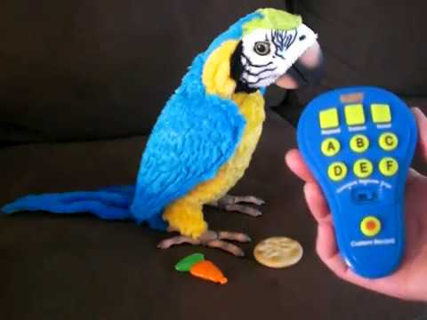 furreal friends parrot instructions