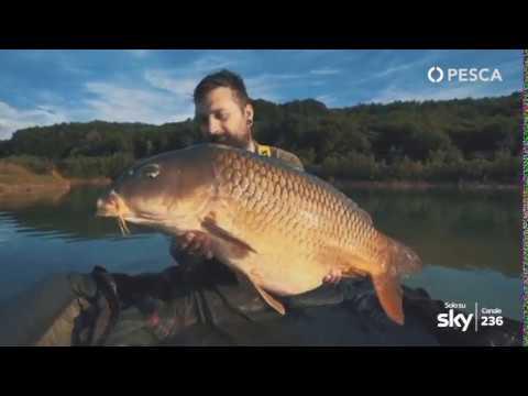 PESCA TV SKY 236 - VITA DA NOMADI: Vogrescek, il paradiso delle carpe