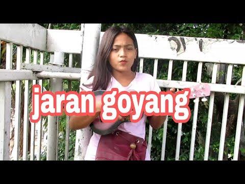 MANDA JARAN GOYANG / KOTA JAKARTA SLIPI JARAN GOYANG