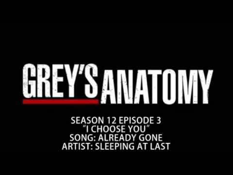 Grey's Anatomy S12E03 - Already Gone by Sleeping At Last