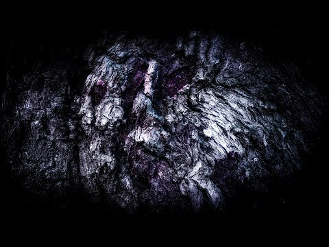 Wintersun - Eternal Darkness (Autumn) Official Lyric Video