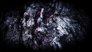 WINTERSUN - Eternal Darkness (Autumn) (Lyric video)