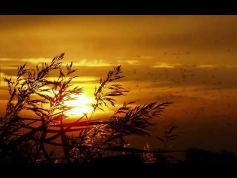 Orange Colored Sky -- Natalie Cole