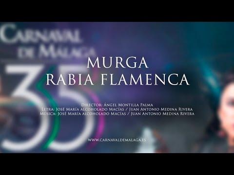 """Carnaval de Málaga 2015 - Murga """"Rabia Flamenca"""" Preliminares"""