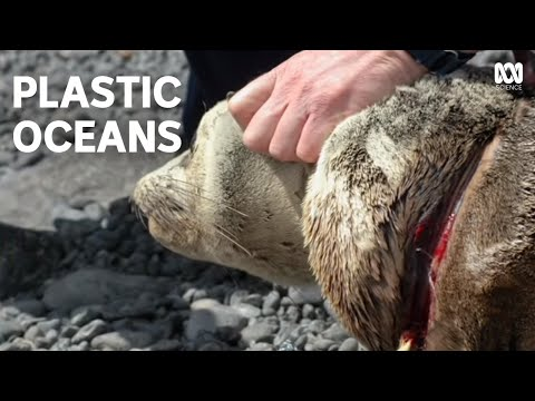 Catalyst ABC TV - Plastic Oceans