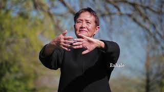 Qigong Full 20 Minute Daily Routine