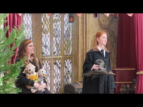 A Celebration Of Harry Potter Day 2 At Universal Orlando & Warner Bros Mini Studio Tour!