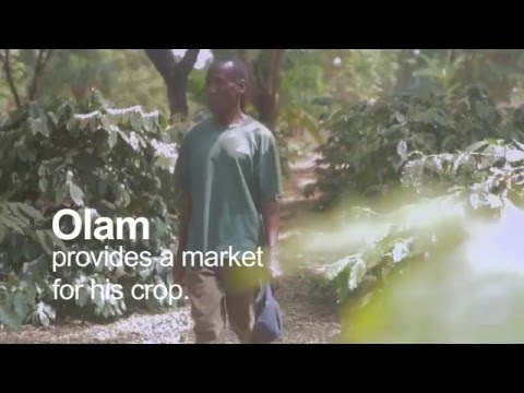 """Olam East Africa """"The Roots of Prosperity"""" Flavian's Farm"""
