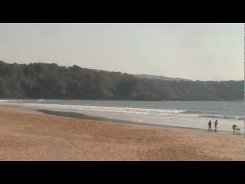 BEST TURTLE BEACH  GOA INDIA travel india travel goa tourism goa