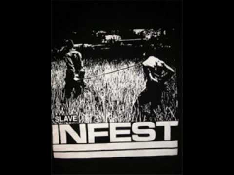 Infest - Voice Your Opinion