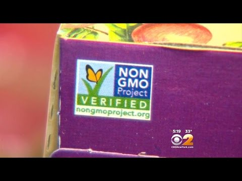 Chefs Demand Law Labeling Genetically Modified Foods