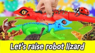 [EN] Let's raise robot lizard!! cocos animation, animals names for kids, collectaㅣCoCosToy