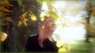 Дмитрий Прянов - Мое ты одиночество (Любимая)
