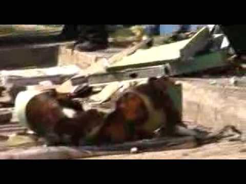 29 niños muertos en incendio en Guarderia ABC de HERMOSILLO