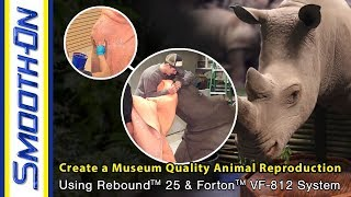 How To Make a Mold of a Rhino for a Museum Display