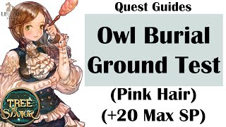 [ TREE OF SAVIOR ] iCBT2 | Owl Burial Ground Test (Pink Hair & +20 SP Potion )