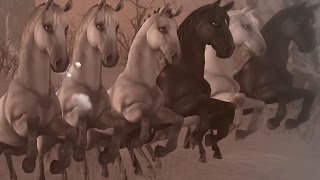 Star Stable Online - Never Forget You