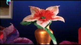 Wet felting wool flower. Narcissus, Carnation
