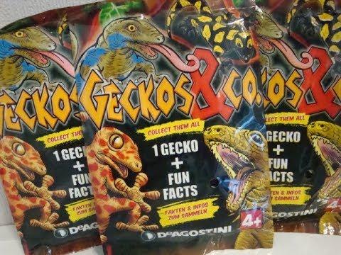 Geckos & co 3D Tiere zum Sammeln Deagostini
