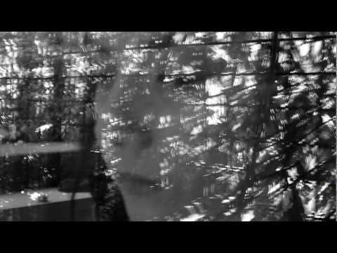 Adore Z feat. Melissa Panarello