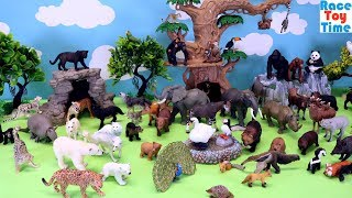 Toy Wildlife Jungle Safari Forest Animals - Fun Animal Toys For Kids