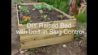 DIY Raised bed garden with built-in slug control