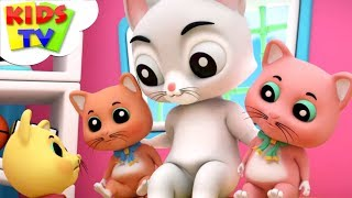 Three Little Kittens | Nursery Rhymes | Kids Songs | Baby Rhymes By Baby Bao Panda