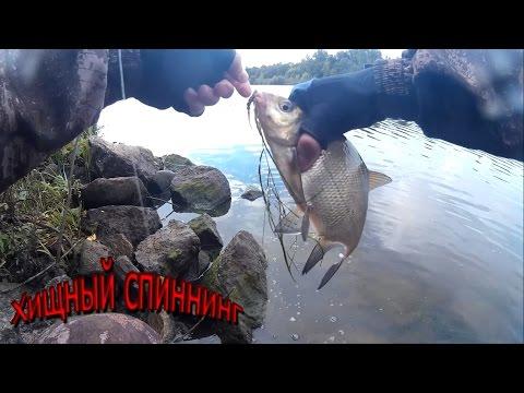 канал им москвы ловля судака