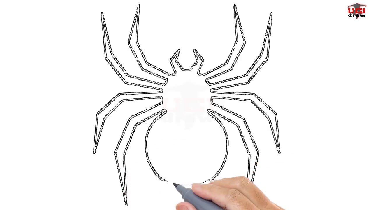 Нарисовать паука своими руками 246
