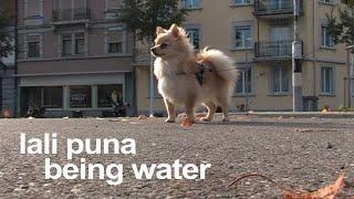 Lali Puna: Being Water