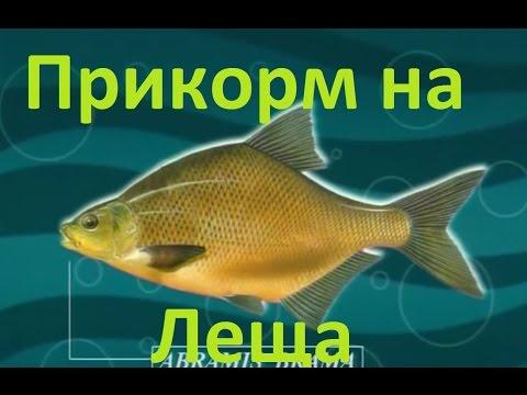 прикормка диалоги о рыбалке официальный сайт