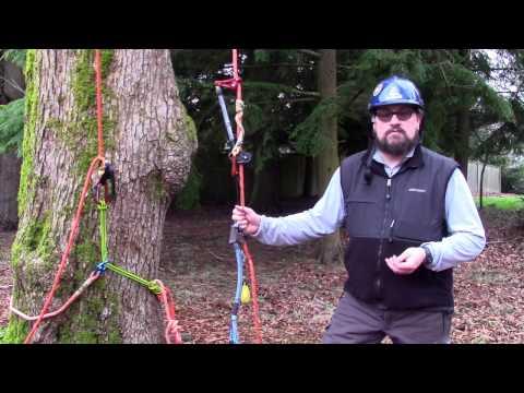 Iron Street Custom Splicing - WesSpur Tree Equipment