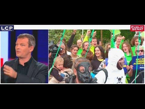 Glyphosate : « Aujourd'hui c'est Monsanto qui a le pouvoir » selon Guillaume BALAS