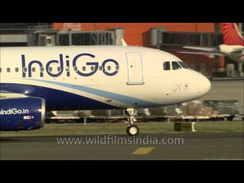 Indigo and Air India planes taxiing at Delhi airport