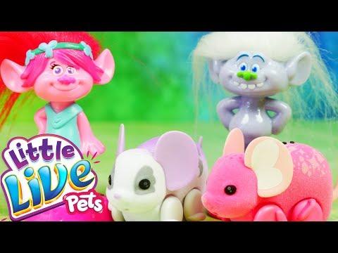 Trolle & Little Live Pets   Myszki z młyna   Bajki dla dzieci i unboxing