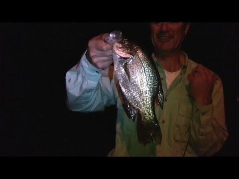How to Fish for Crappies at Night - Crappie Fishing from a Dock Using Live and Artificial Baits
