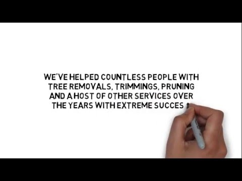 Tree trimming services Baltimore,Tree Trimming Companies Baltimore MD