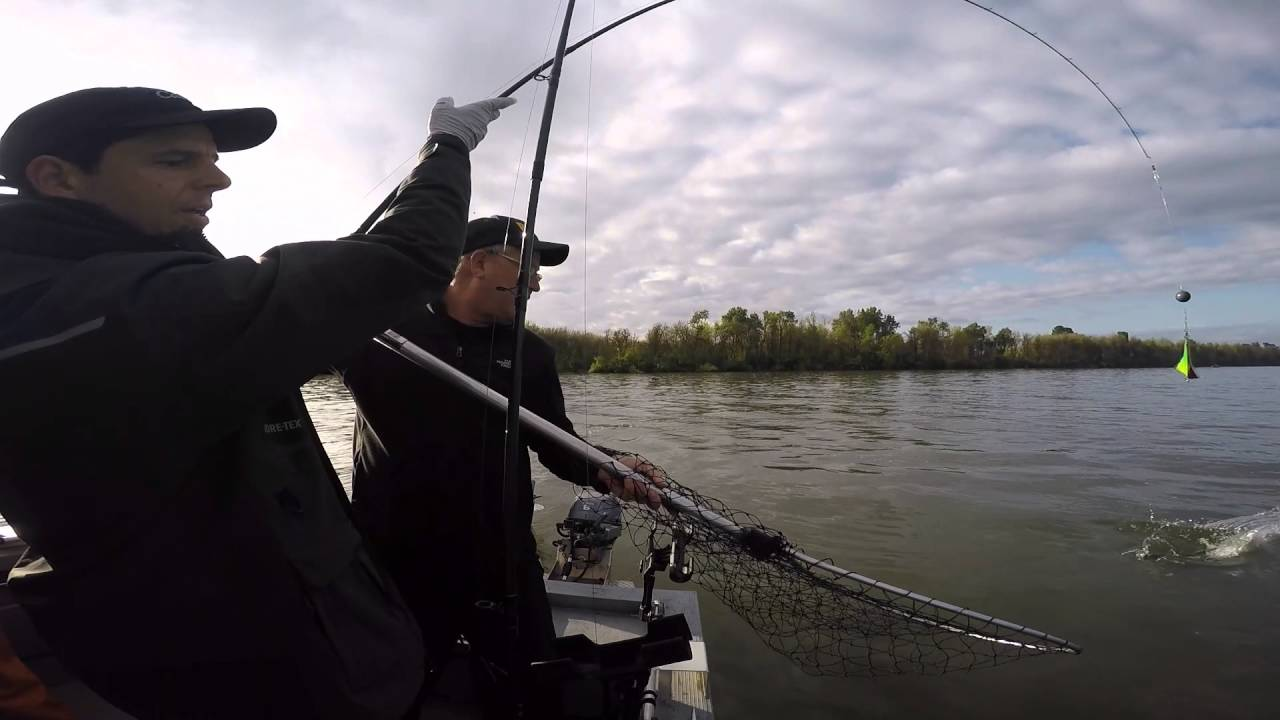 Spring chinook salmon fishing in the multnomah channel in for Salmon fishing in oregon