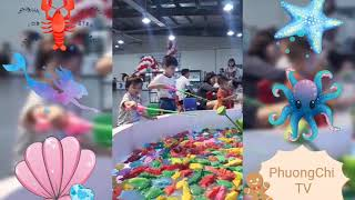 Bé yêu đi câu cá đại dương đồ chơi ở khu vui chơi @ Nhạc thiếu nhi sôi động @ Phuong Chi TV