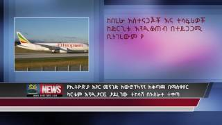 A suspect who force to change Ethiopian plain direction is charged 5 years