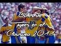 Goles de Tigres UANL Clausura 2011