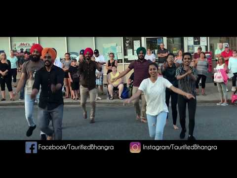 Bay Day Parformance || Taurified Bhangra