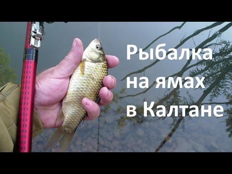 рыбалка на карася весной на алтае