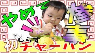 【パパ特製チャーハンで勃発!?】食べたくない1歳2ヶ月の赤ちゃんVS食べさせたいママ【離乳食完了期】1歳2ヶ月の赤ちゃん みはるんchannel