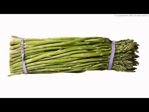 Vegetables | Learn English | Vocabulary and Pronunciation