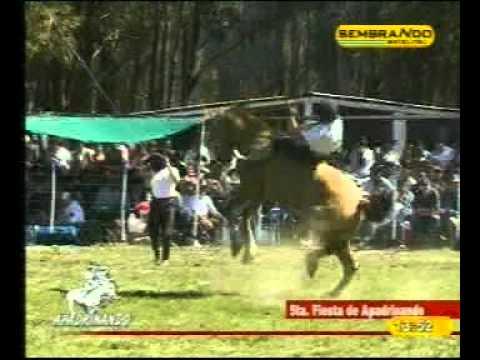 5ta Fiesta Apadrinando