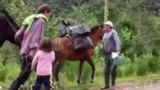 Tier Doku E02 Der Gelbschwanz Wollaffe in Peru German 2016